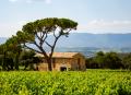 Domaine Les Perpetus - Provence