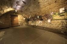 Truffle and wine museum