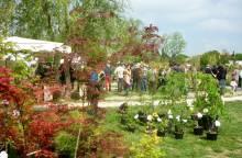 Rare Plants and Natural Gardens