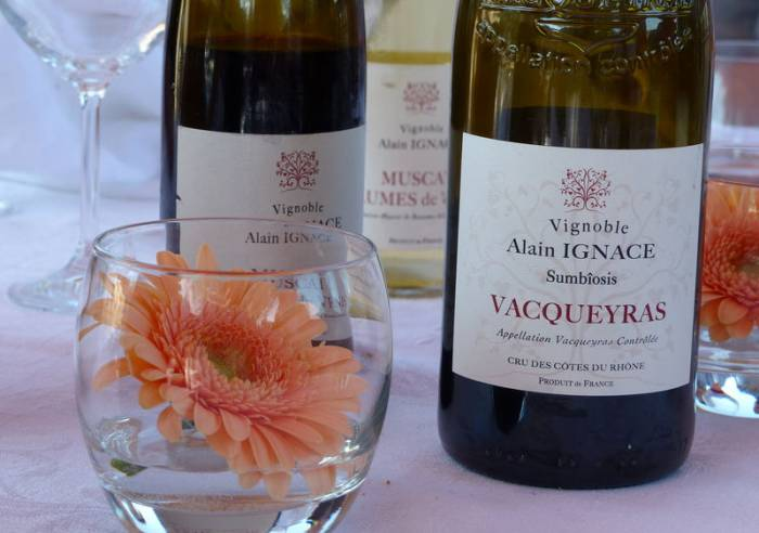 Vignoble Alain Ignace