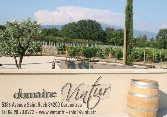 Domaine Vintur Wine Estate