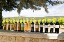 Wijndomein de la Bastidonne