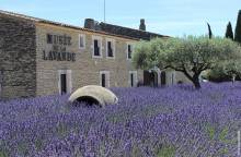 Musée de la Lavande Luberon