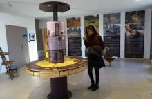 Trüffelmuseum des Ventoux