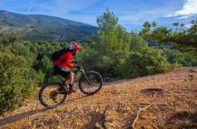 Bedoin - Le Rat - Mountain Bike Trail No 4