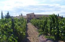 Weingut Le Domaine des Ondines