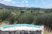 Vineyard hike in Vacqueyras