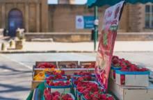Marché Traditionnel de La Tour d'Aigues