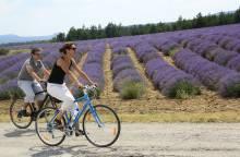 23 - The Plateau de Sault by bike