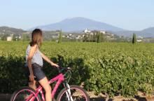 Fietstocht langs de Côtes du Rhône