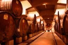 Wine cellars tour of the Cellier des (...)