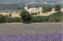 Château de la Gabelle - Bed & Breakfast