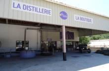 Les Agnels - Lavender and aromatic plant (...)