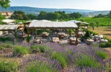 Coquillade Village - Les vignes et son jardin