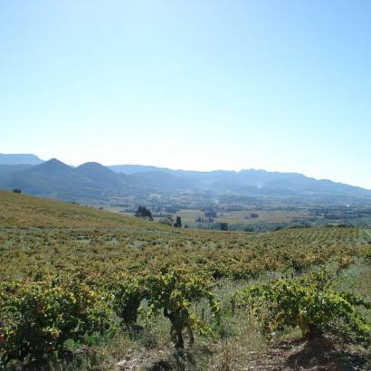 32 - The landscapes of the Côtes du Rhône