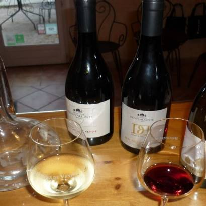 Introduction to wine tasting at Domaine Beauvalcinte