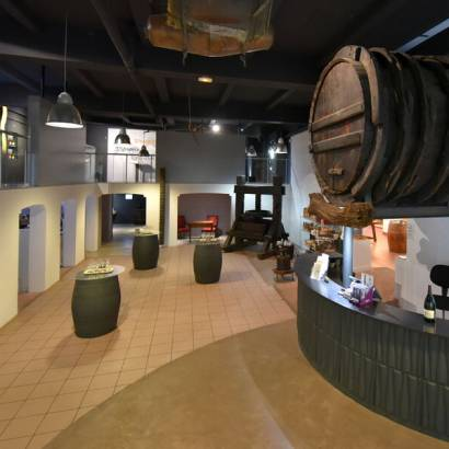 Tour of the wine cellar and prestige tasting