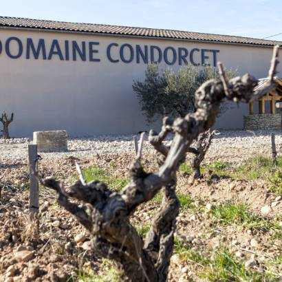 Wine tourism at Domaine Condorcet