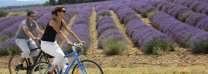 Le Tour du Ventoux à vélo
