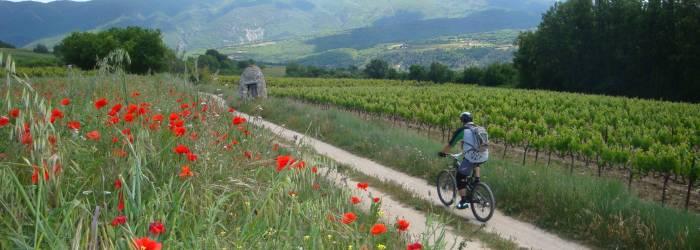 VTT n°2 - Grand Tour du Pays d'Apt -GPS