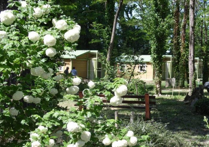 Camping Parc des Libertés