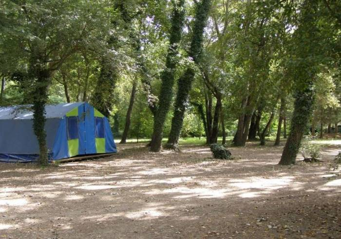 camping du parc des libert s camping avignon camping vaucluse en provence. Black Bedroom Furniture Sets. Home Design Ideas