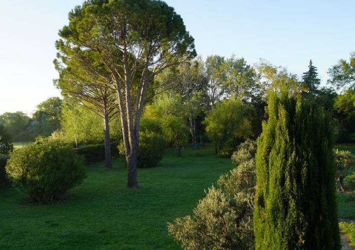 Le Flory' Sun