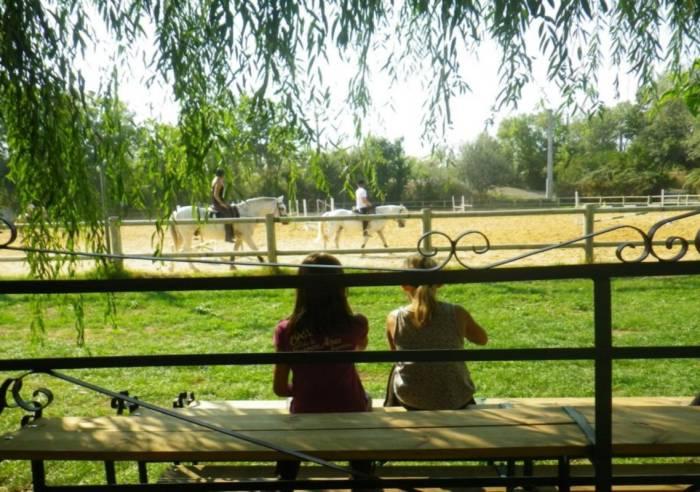 Centre Equestre d'Avignon